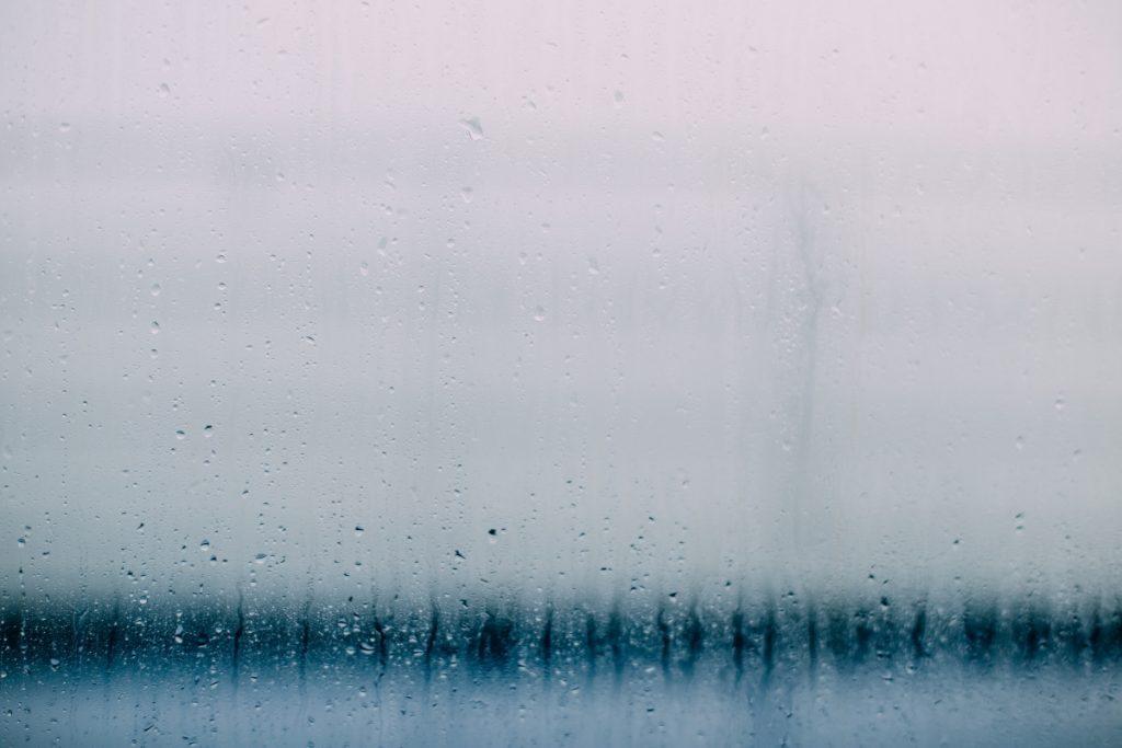 rainy_t20_OxgQkE